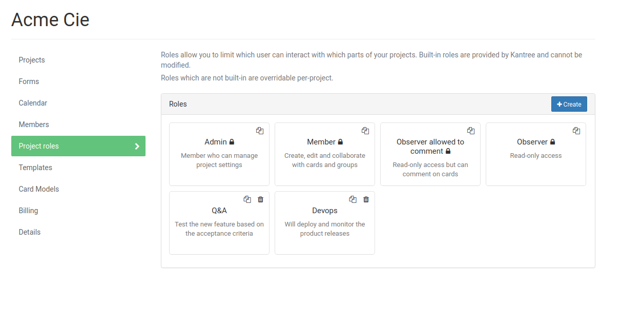 project roles tab